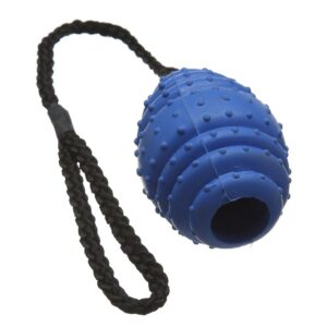 Classic Pet Products Rubber Oval Ball on a Rope Dog Toy - Large Blue