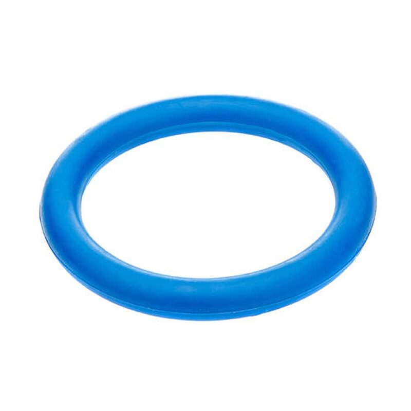 Classic Pet Products Solid Rubber Ring Dog Toy - Large Blue