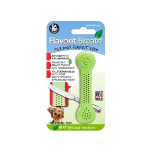 Flavorit Mint Flavoured Nylon Dog Bone Small
