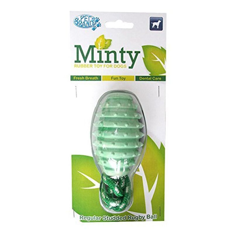 Pet Brands Minty Fresh Studded Rugby Ball Regular Dog Toy