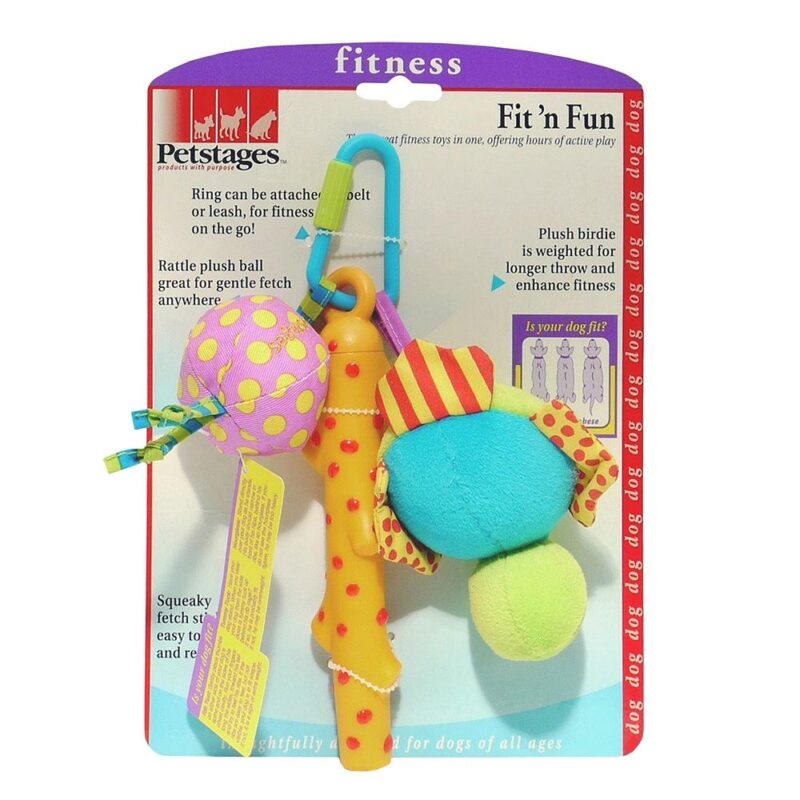 Petstages Fit 'n Fun Dog Toy