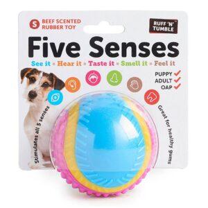 Sharples Five Senses Sensory Ball Dog Toy Small