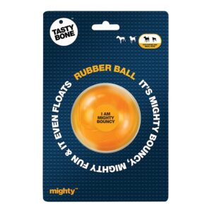 Tastybone Mighty Ball Dog Toy - Small
